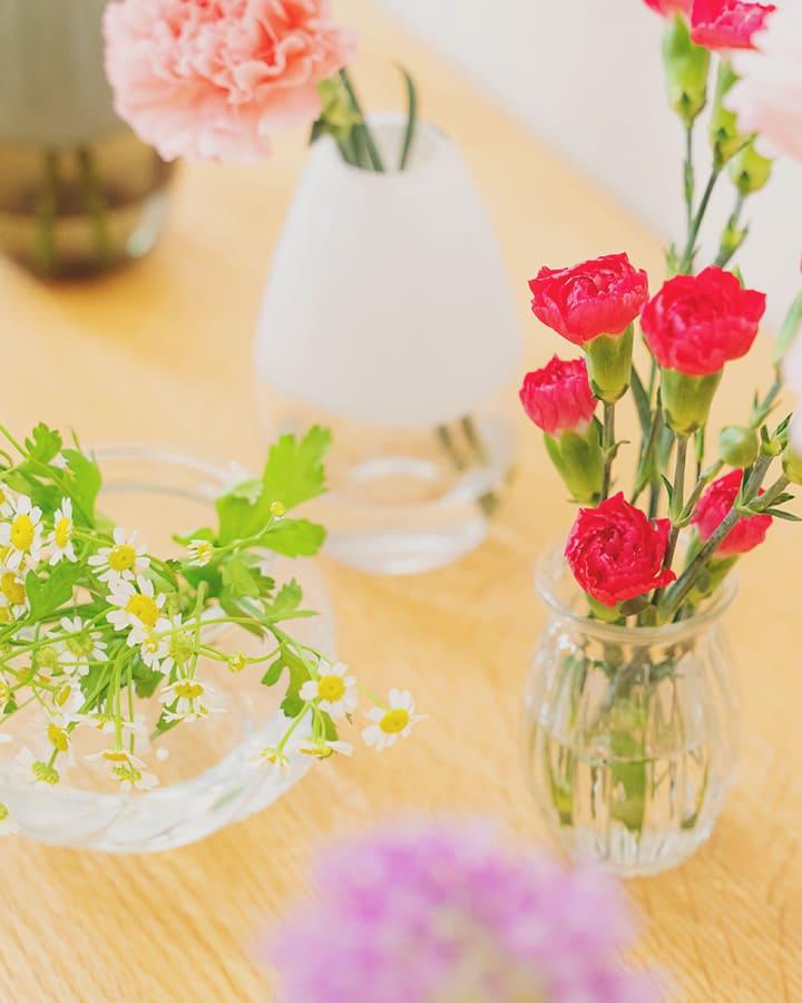 フラントリーブの花3